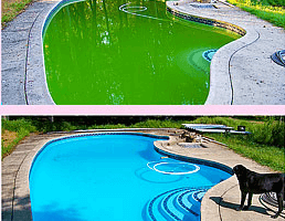 Looking Good by Eradicating the Pool Green Water Problem.