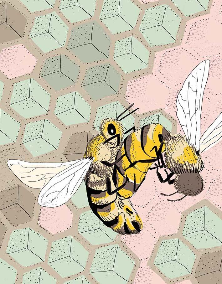 la vie amoureuse des animaux_abeilles_nathalie desforges
