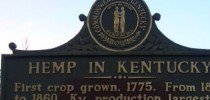 Industrial Hemp Research Pilot Program now taking applications for 2017