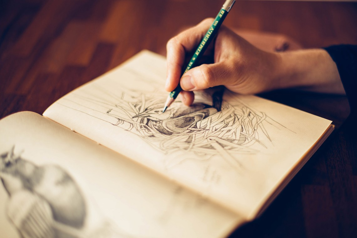 a_creative_call_to_connect_with_nature_female_blackbird_sketching