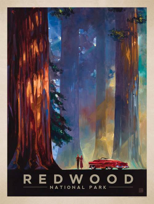 ultimate_centennial_birthday_present_anderson_design_group_redwood_poster