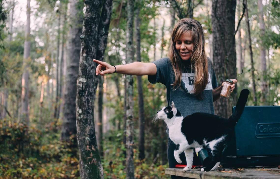 six_creepy_tales_national_park_quest_cat