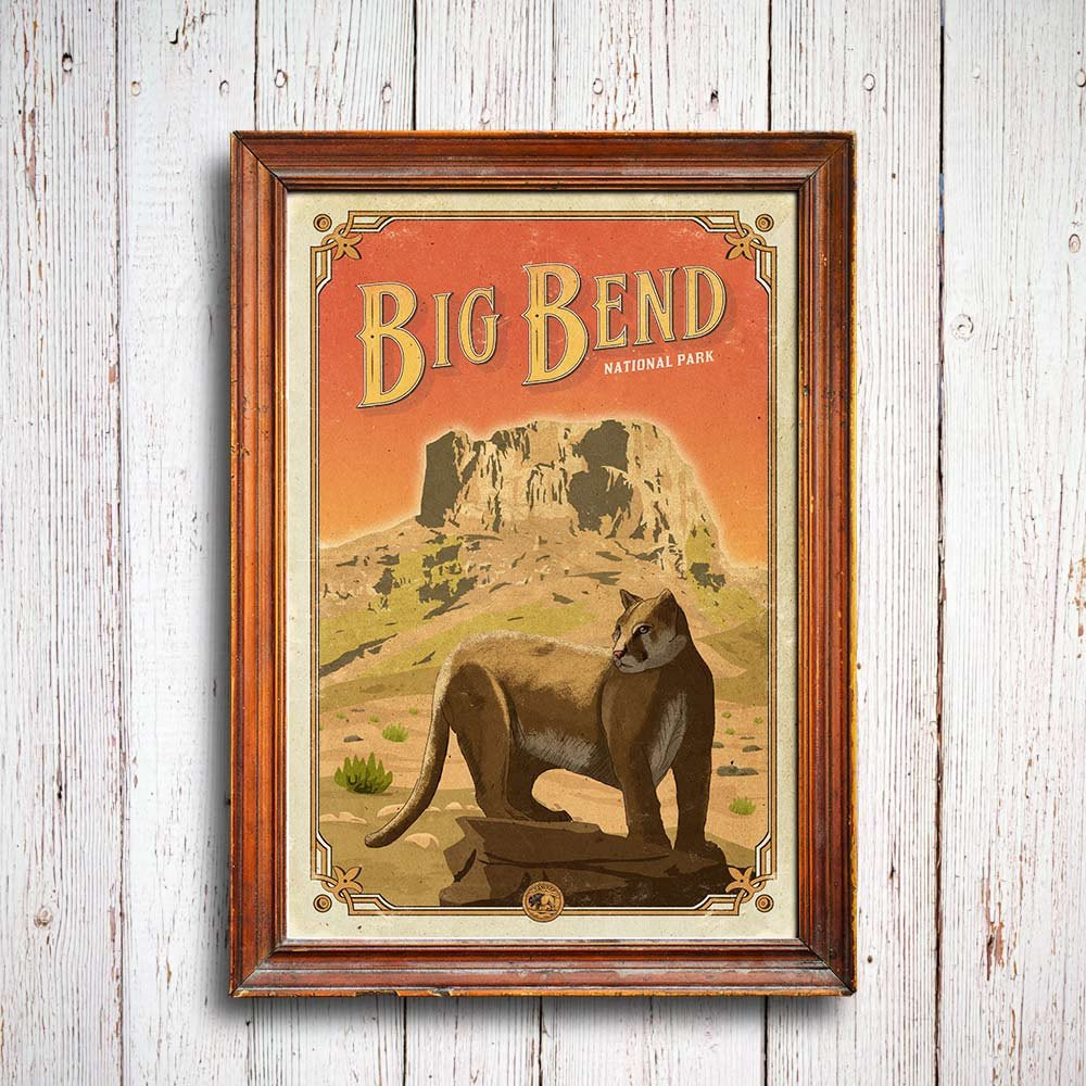 Big_bend_poster_3_1024x1024_mountain_lion_quest