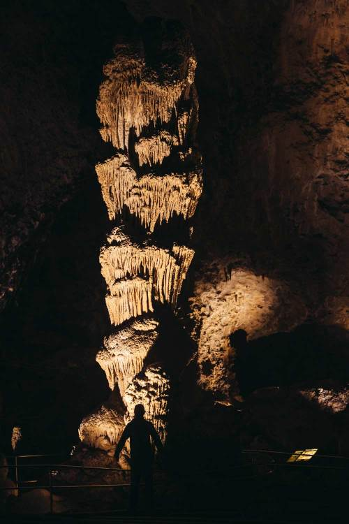 Carlsbad_caverns_sculpture_formations_national_park_quest