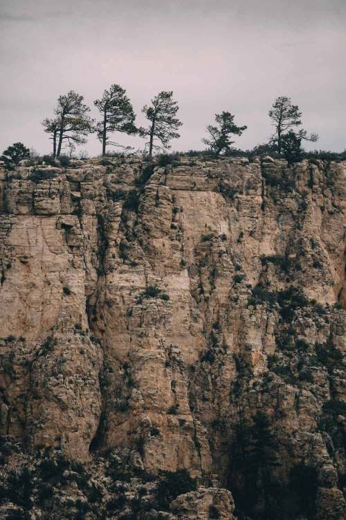 guadalupe_mountains_national_park_guadalupe_peak_view_trees