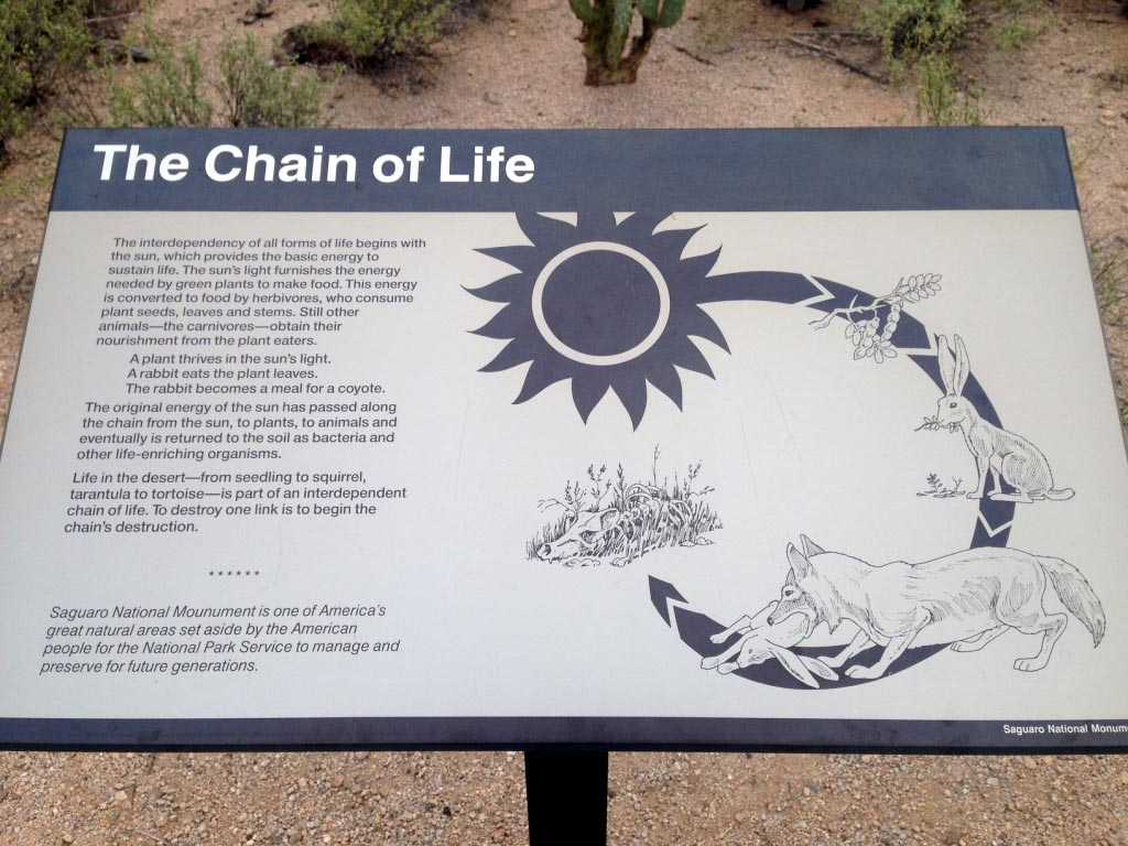 reflection_land_saguaros_national_park_display_sign