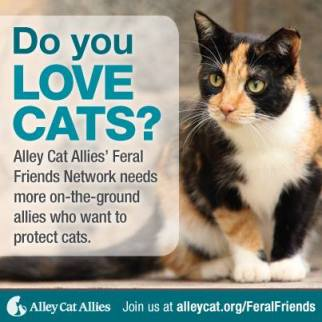 No. What they need is a plan that works. They need to consider things like COST. They need to acknowledge feral cats have eaten into extinction 33 species of native birds. -- PROPAGANDA