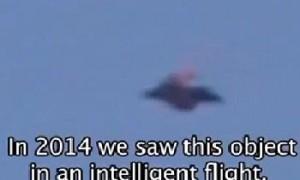 UFO Photo Mexico Disc 2014