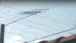 UFO Photo Phila Video Stop Disc 23Mar14