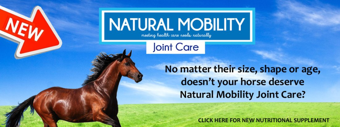 joint-supplement-2016-horses-7
