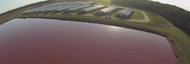 factory-farm-drone-lake