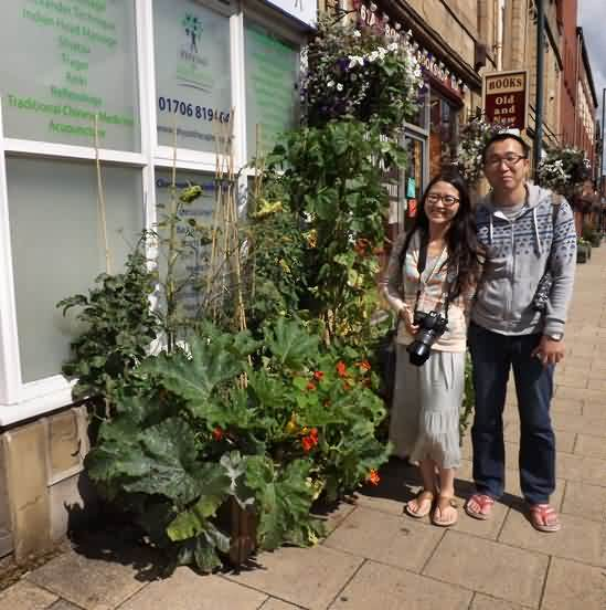Self-Sustaining Town Grows Vegetables in Most Unlikely Places Garden_food_ns_article_incredible_Edible