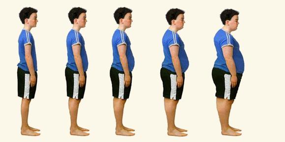 msm weight loss