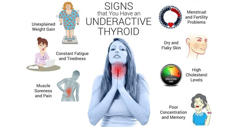 images 3 Ways To Keep Your Thyroid Healthy