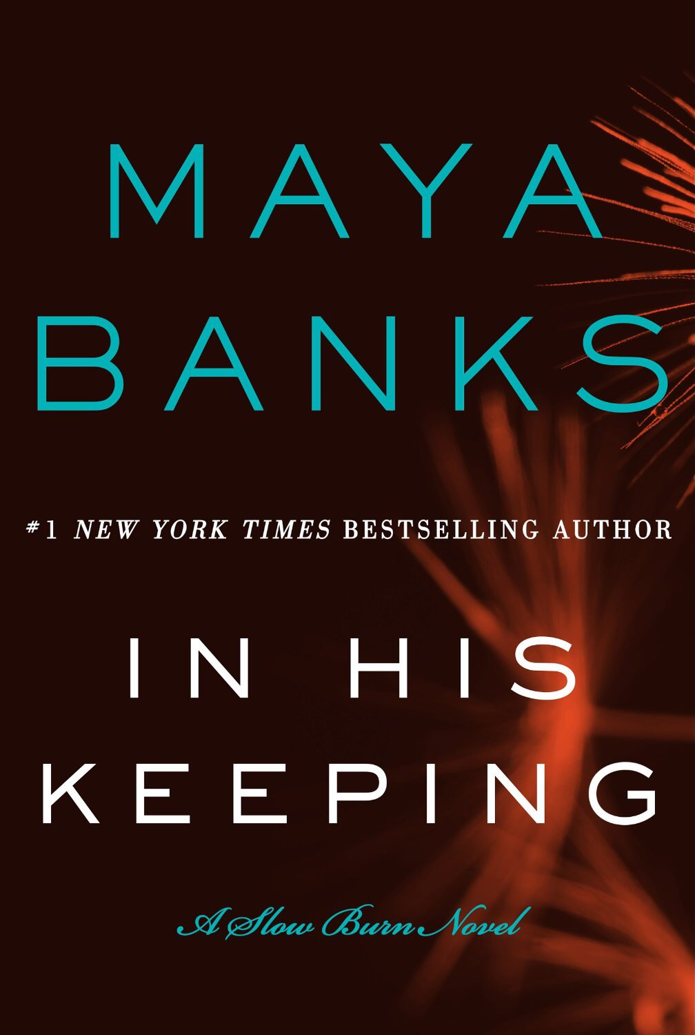 Review: In His Keeping by Maya Banks (rom-susp)