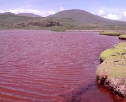 red-lagoon-chile-1