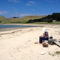 What a difference a year makes - last day in New Zealand