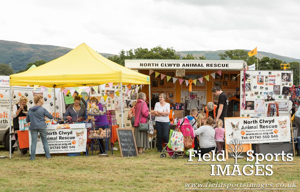 flint and denbigh show