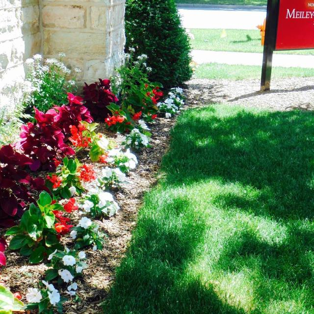 We see Cardinal colors everywhere northcentralcollege schoolcolors redandwhite