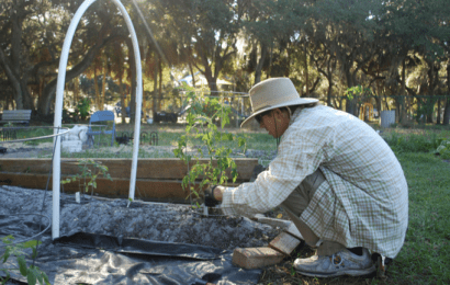 Conversations with gardeners at Orange Blossom Community Garden