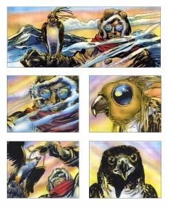 falcon-storyboard