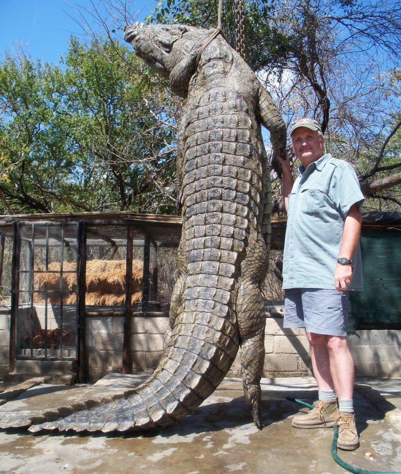 crocodile-mozambique