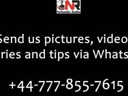 Nehanda Citizen Reports