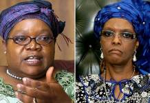 Joice Mujuru (left) was effectively hounded out of Zanu PF and government by a vicious First Lady Grace Mugabe (right)