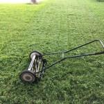 lawn-1812944_1280