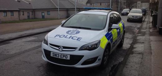 police car NELO