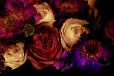 濃密な大輪の花々