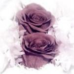 薔薇の置物の写真素材(2パターン)
