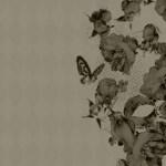 枯れた雰囲気の花と蝶(4パターン)
