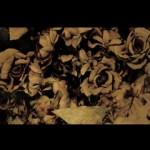 アンティークなドライフラワー風の薔薇(12パターン)
