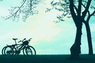 【高解像度】広い空と木陰に停まる2台の自転車(3パターン)