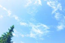 sky270