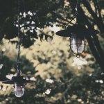 【高解像度】森の中のランプ(3パターン)