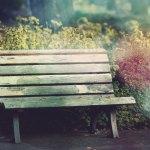 【高解像度】花に囲まれた無人のベンチ(3パターン)
