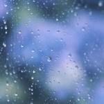 【高解像度】滲む紫陽花と雨粒(アジサイ)(3パターン)