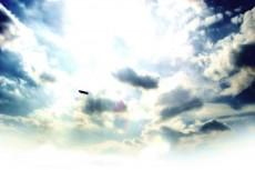 sky113