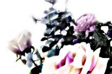 flower270