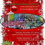 क्रिसमसको पूर्वसन्ध्यामा क्रिसमस महोत्सवको आयोजना