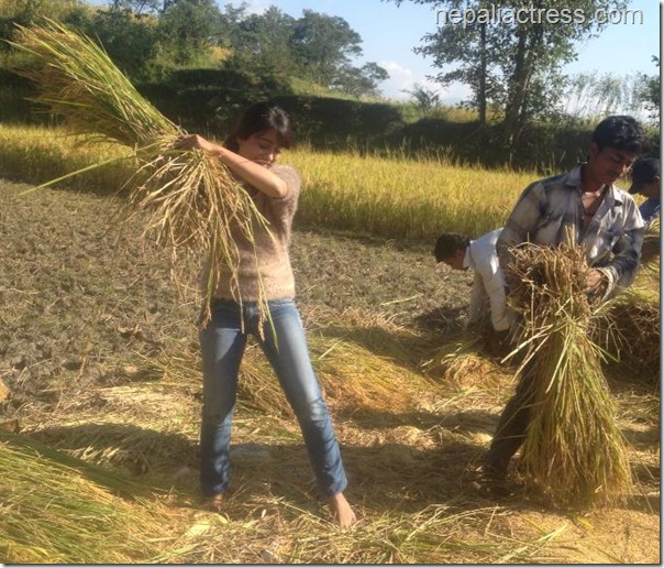 after starting the farming business binita is seen involved in all