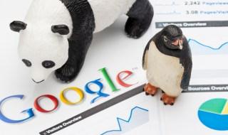 Google penguin and Panda Nepali Blog