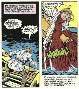 Star Wars #13 – July, 1978