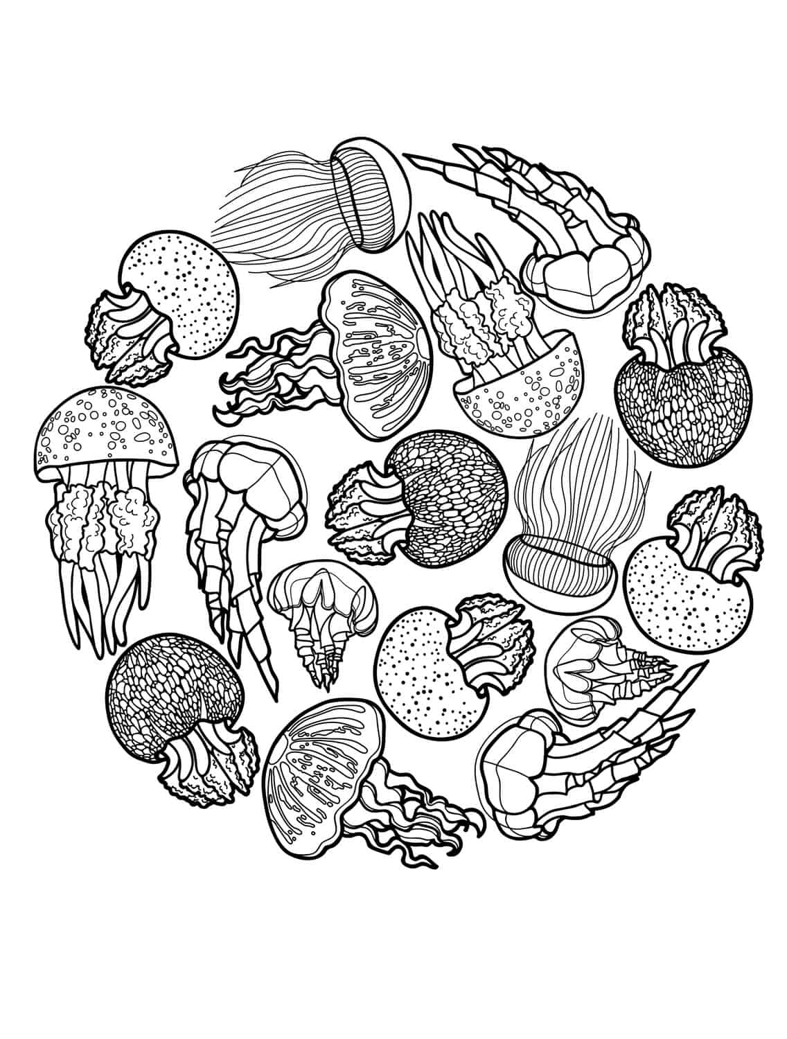 6af803ea4d798851f549f87cb4523bca further Lovely Ocean Coloring Page for Adults in addition f6d7bf07b8b2fbaa98ba11ce544bf666 in addition coloriage hibou dessin brut as well  in addition  additionally Sea turtle coloring pages under the sea furthermore  besides Leatherback Sea Turtle Coloring Page also  further . on printable adult coloring pages sea turtle