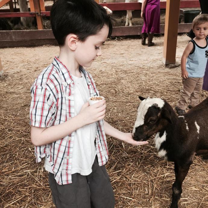 My little goat herder goats bristolrenaissancefaire bristolren lifewithboys motherson nofilter