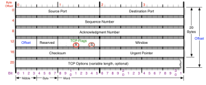 SYN ACK flags set in TCP Flags field