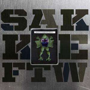 SakkieFTW - Experiment 1.3.2 EP