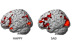happysadbrainactivity